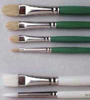 GreenCleen Brushes